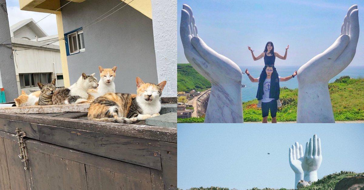 全球十大秘島其中一座在台灣!澎湖「虎井嶼」玩點大公開,巨手追日、超萌貓島好療癒
