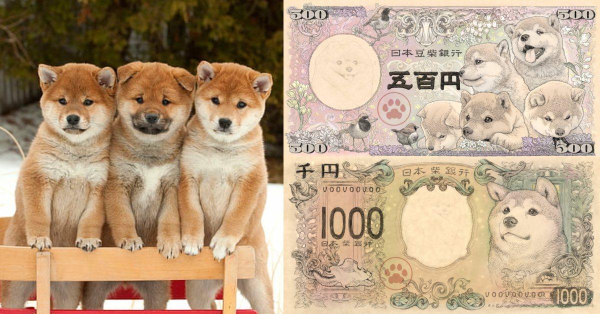 日本國內限定!令和年最萌紙鈔「五百日幣豆柴紙鈔系列」11月開賣,柴犬迷準備團購
